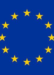 https://www.eapn.ie/wp-content/uploads/2019/04/EU-flag-182x255.jpg