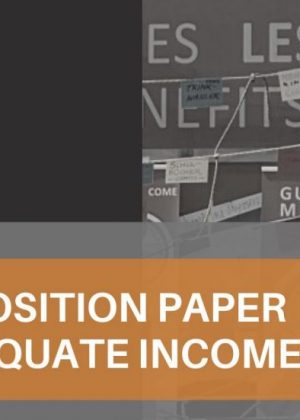 https://www.eapn.ie/wp-content/uploads/2021/05/Adequate-Income-300x420.jpg